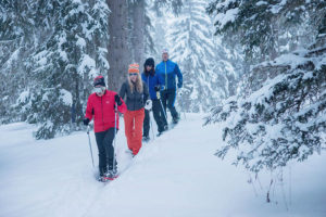 Take a snowshoeing break for your health!