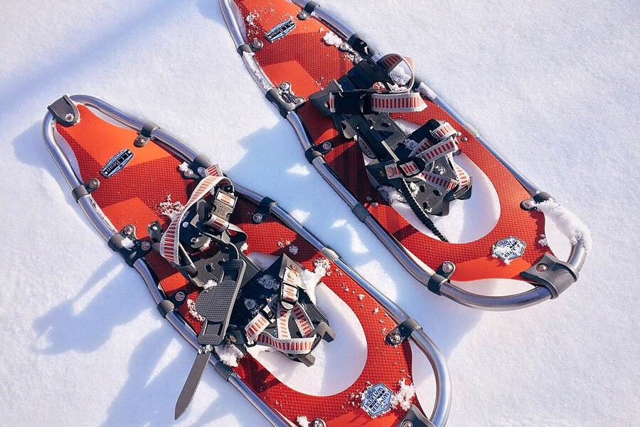Какая средняя стоимость похода на снегоступах ?